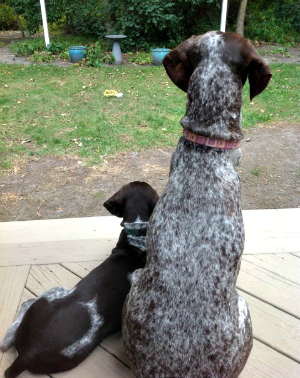 mya and puppy