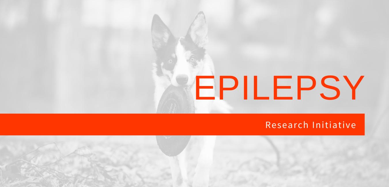 Epilepsy Initiative